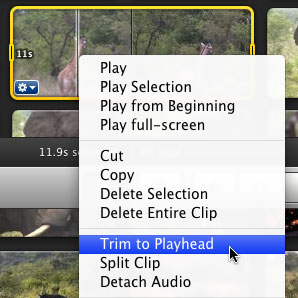 trim-to-playhead-menu.jpg